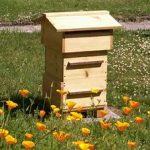 A Home For Our Honey Bees